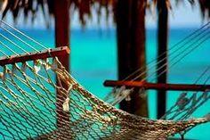 hammock on the beach, chill.