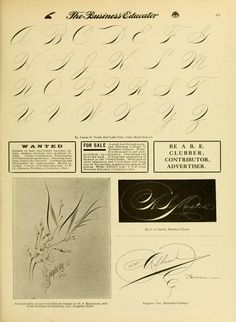Bound copies of Volume 20 (Issues of The Business Educator Copperplate Calligraphy, Penmanship, Caligraphy, Lettering Guide, Handwriting, The Borrowers, Letters, Education, Business