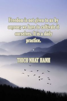 Freedom is not given to us by anyone; we have to cultivate it ourselves. It is a daily practice. Uplifting Quotes, Inspirational Quotes, Meditation, Zen, Buddhist Quotes, Buddha Buddhism, Thich Nhat Hanh, Spiritual Teachers, Peace On Earth