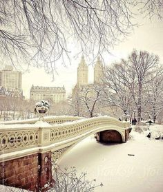Beautiful winter scene Central Park .