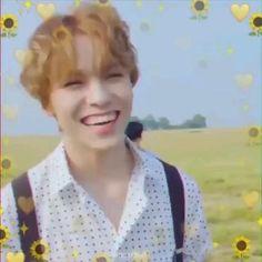 VERNON of SEVENTEEN. Cr to the owner Woozi, Jeonghan, Wonwoo, The8, Seungkwan, Seventeen Memes, Seventeen Album, Vernon Seventeen, Just Video