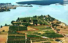Rimu Grove Winery has such a fanstastic location surround by the sea!