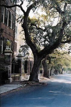 Legare Street, Charleston