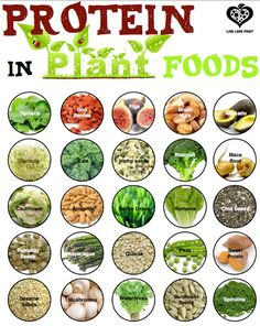 Food Fact: EVERY, YES EVERY, WHOLE FOOD CONTAINS PROTEIN. Finding plants packed with protein is easy to do & is easy for your body to use.Plant-based foods are free from cholesterol, tend to be high in fiber & are often alkalizing to the body.  All animal products, on the other hand, are devoid of fiber & are acidifying to the body, which causes calcium to be  leached from your bones, as well as decreasing oxygen levels in the blood & negatively impacting the digestive/lymphatic system.