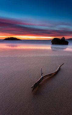 Marshall Beach Twig by tobyharriman, via Flickr