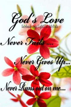 GOD'S LOVE NEVER FAILS................I Love You LORD GOD With Everything I Have And All That I Am!!!!!! <3 <3 <3 :-D :D :-) :) :-} :} :-] :]