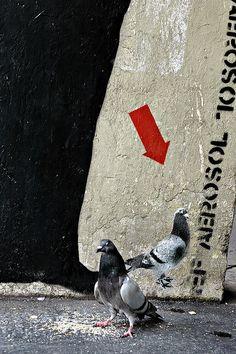 Jef Aérosol 2006 - Paris pigeons...