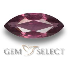 GemSelect features this natural untreated Rhodolite Garnet from Mozambique. This Red Rhodolite Garnet weighs 1.3ct and measures 10.4 x 4.5mm in size. More Marquise Facet Rhodolite Garnet is available on gemselect.com #birthstones #healing #jewelrystone #loosegemstones #buygems #gemstonelover #naturalgemstone #coloredgemstones #gemstones #gem #gems #gemselect #sale #shopping #gemshopping #naturalrhodolitegarnet #rhodolitegarnet #redrhodolitegarnet #marquisegem #marquisegems #redgem #red