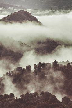 retro,landscapes, mountain,snow,fog,forest,branches, trees,tree, rain,textures,horizontal,outdoors, nature, landscape, exterior, europe, photography, spain, granada, mist, vintage,dreams,adventure,sky,