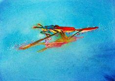 Italy 2010   Carol Carter Watercolors and Acrylics