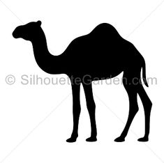 Camel silhouette clip art. Download free versions of the image in EPS, JPG, PDF, PNG, and SVG formats at http://silhouettegarden.com/download/camel-silhouette/