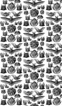 Bats fabric by blackwood on Spoonflower - custom fabric