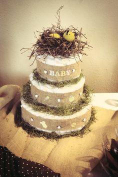 Feather the Nest theme baby shower
