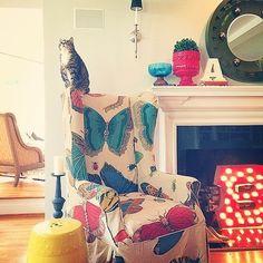 HomeGoods Decor | POPSUGAR Home