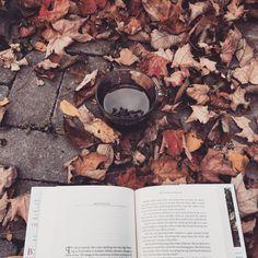 sleepybookowl:   Fall colours, warm coffee, books....