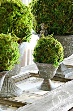 Beautiful and Stunning Topiary DIY Projects is what it is all about today! From Boxwood to Olive Branches there is something for your Farmhouse for sure! Home Crafts, Diy Home Decor, Moss Decor, Moss Garden, Floral Wall, Topiary, Spring Crafts, Indoor Plants, Floral Arrangements