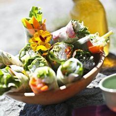 Fresh Vegetable Spring Rolls, rice paper, carrots, avocado, basil, parsley,