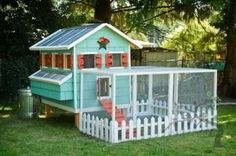 Build Your Own Chicken Coop - Chicken coop plans and resources for building your own hen house at home!