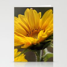 Summertime Stationery Cards by Fine2art - $12.00