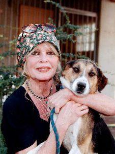 Photo of Brigitte Bardot & her Dog