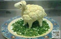 Find out how to confuse a vegan or a vegetarian. Once you see this you might want to try this out on any vegan or vegetarian friends you have! Best Funny Images, Super Funny Pictures, Super Funny Quotes, Funny Animal Pictures, Funny Animals, Animal Jokes, Vegetarian Memes, Vegan Memes, Vegan Funny