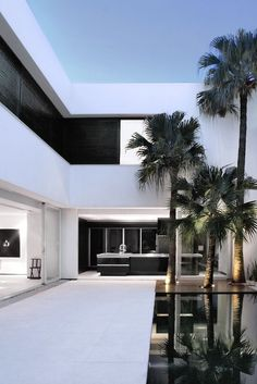 modern house and palm trees. #architecture