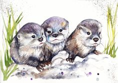 Original Watercolour Painting by Be Coventry,Animals,Realism,Otter Pups