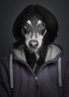Underdog: Humanized Dog Portraits from Sebastian Magnani http://5thin.gs/19VRg2L  Bern Switzerland based photographer Sebastian Magnani blends his photographs of dogs with their owners digitally to make these humanized dog portraits.