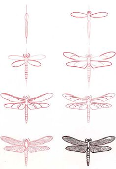 How to draw a dragonfly. Found on http://2011hairstylescindy.blogspot.com❤❤