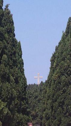 Forest of Filerimos Rhodes