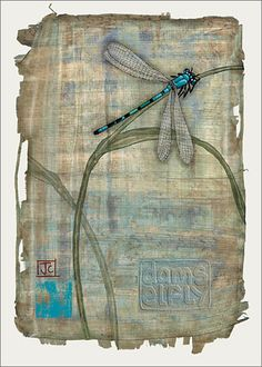 BugArt Paper & Foil ~ Damselfly. PAPER & FOIL Designed by Jane Crowther.