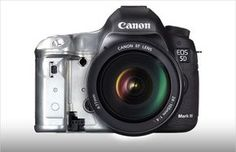 All about canon 5dIII - metering and focus systems explained