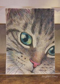 """OAK Original drawing cat art  """"A Cute Tabby Cat"""" grey striped cat, lover's gift,  watercolor pencil drawing, #jingfenhwu"""