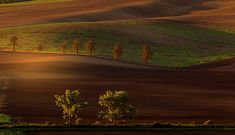 Autumn Sunrise In The Fields by Pavel Rezac Beautiful Landscapes, Tuscany, Countryside, The Row, Fields, Sunrise, Country Roads, Autumn, Explore
