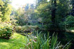 https://flic.kr/p/9V8duJ | Botanischer Garten in Göttingen  #Flickr #Foto #Photo #Fotografie #Photography #Natur #Nature #Garten #Travel #Reisen #德國 #照片 #出差旅行 #Urlaub