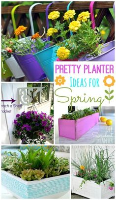 Pretty Planter Ideas for Spring | eBay