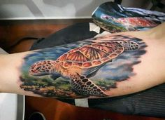 100 turtle tattoos for men - hard shell design ideas Turtle Tattoo Designs, Flower Tattoo Designs, Tattoo Designs Men, Turtle Tattoos, Shell Tattoos, Old Tattoos, Funny Tattoos, Tattoos For Guys, Reptiles