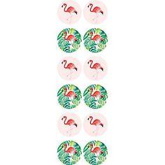 Tropical Flamingo Circle Stickers