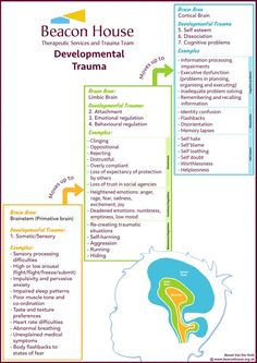 Developmental Trauma Diagram A therapeutic approach called the 'Neuro-Sequential Model of Therapeutics' to help heal attachment disorder. This model recovers and repairs each part of a child's brain in a specific, phased and effective order. We need to en Psychology Posters, Psychology Memes, Psychology Studies, Trauma Therapy, Therapy Tools, Play Therapy, Therapy Ideas, Cognitive Problems, Adverse Childhood Experiences
