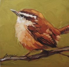 Carolina Wren Print 6x6 fine art print bird prints by LaveryART