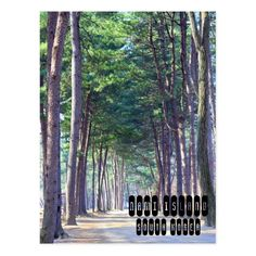 Obgleich der Teil Chuncheons von Gebiet, von Nami Insel oder von Namiseom leicht von einem Kai in Gapyeong Landkreis, in seinem Hauptzugang und in Sprung-weg Punkt zugänglich ist. Chuncheon, Nami Island, Filming Locations, Postcard Size, South Korea, Places To Travel, Poster, Vacation, Prints