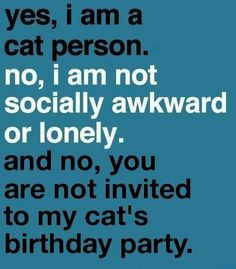 Yes, I am a cat person