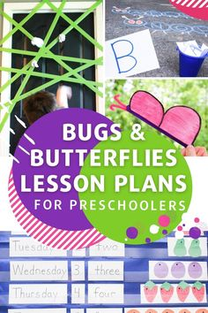 Teach your students all about insects with this easy bug and butterfly theme lesson plans from Life Over C's for preschool! The 20+ lessons cover math, the alphabet, the butterfly life cycle, and more! Grab these preschool lesson plan ideas. Preschool Science Activities, Preschool Themes, Alphabet Activities, Lesson Plans For Toddlers, Preschool Lesson Plans, Teaching The Alphabet, Literacy Skills, Math For Kids, Creative Teaching