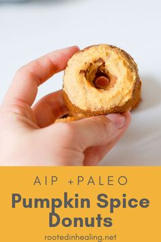 Gluten free pumpkin spice donut recipe is perfect for fall. It's going to pair perfectly with your pumpkin spice latte during the fall season. Pumpkin Spice Donut Recipe, Paleo Pumpkin Bread, Gluten Free Pumpkin, Pumpkin Spice Latte, Pumpkin Recipes, Fall Recipes, Paleo Bread, Pumpkin Puree, Bread Baking