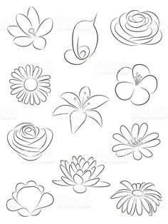Flower Drawings Set of flowers. royalty-free set of flowers vector illustration stock vector art Drawing Lessons, Art Lessons, Drawing Techniques, Doodle Drawings, Pencil Drawings, Illustration Blume, Wood Illustration, Illustration Tattoo, Art Tutorials