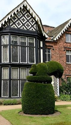 Squirrel topiary, Rufford Old Hall, Lancashire, England