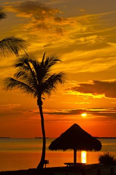 Sunset, Kona Kai Resort, Key Largo, Florida Keys  - Photo by Blaine Harrington III
