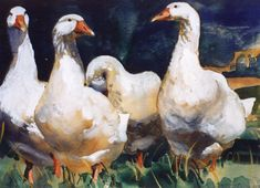 Brian Baxter: Four Geese Gouache, Watercolor Art, Rooster, Birds, Artist, Painting, Animals, Animales, Watercolor Painting