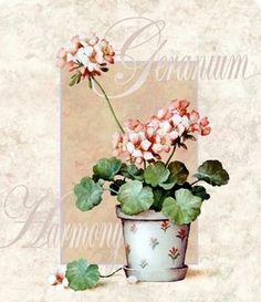 봄에 어울리는 화초 라벨모음~라벨로 봄단장 해보세요^^ : 네이버 블로그