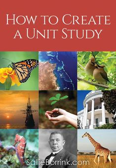 Unit studies are a great way to learn in a relaxed homeschooling family. Learn how to create a unit study in a way that is easy and fun! Discover unit study printables in this post and lots of links to unit studies already put together for you! Teaching Us History, Teaching Social Studies, History Education, Education Uk, Waldorf Education, Environmental Education, Character Education, Science Education, Homeschool Kindergarten